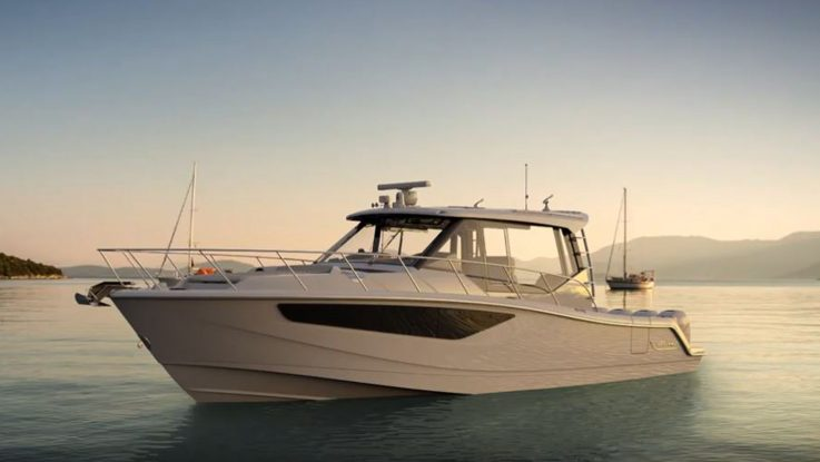 Two New Boston Whaler Conquests